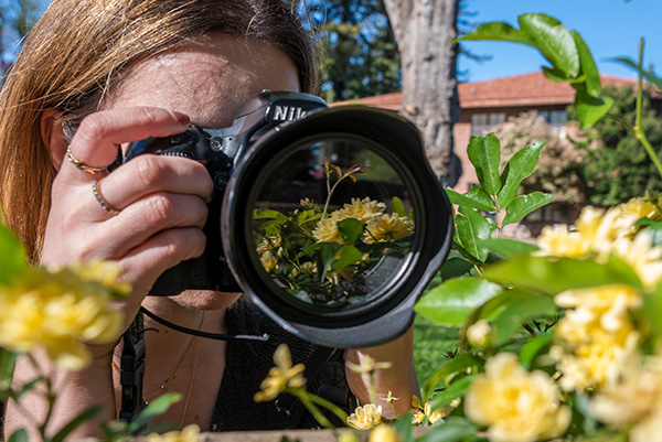 A student taking a picture featuring yellow flowers.
