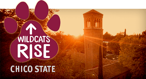 Wildcats Rise: Camp Fire Information