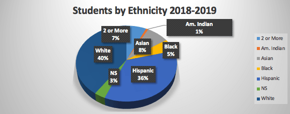 students by ethnicity 2018-2019: 40% of students are white and 1% are American indian