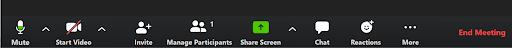 Zoom meeting toolbar